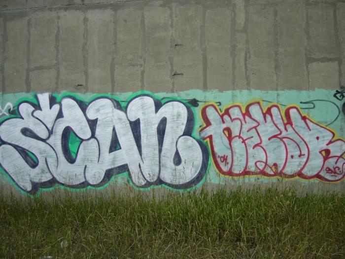 Scan Nesar Turcot July 26 2004